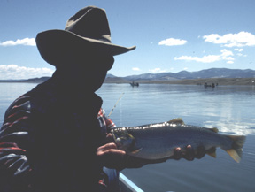 colorado fishing cutthroat trout