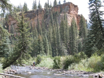 Beautiful canyon walls Piedra River in Colorado
