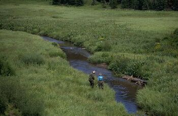Small stream fishing in the Flat Tops, Colorado