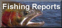 Colorado fishing reports